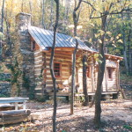 Part One… Building a rustic cabin