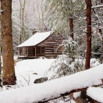 What are the benefits of living in a real cabin?