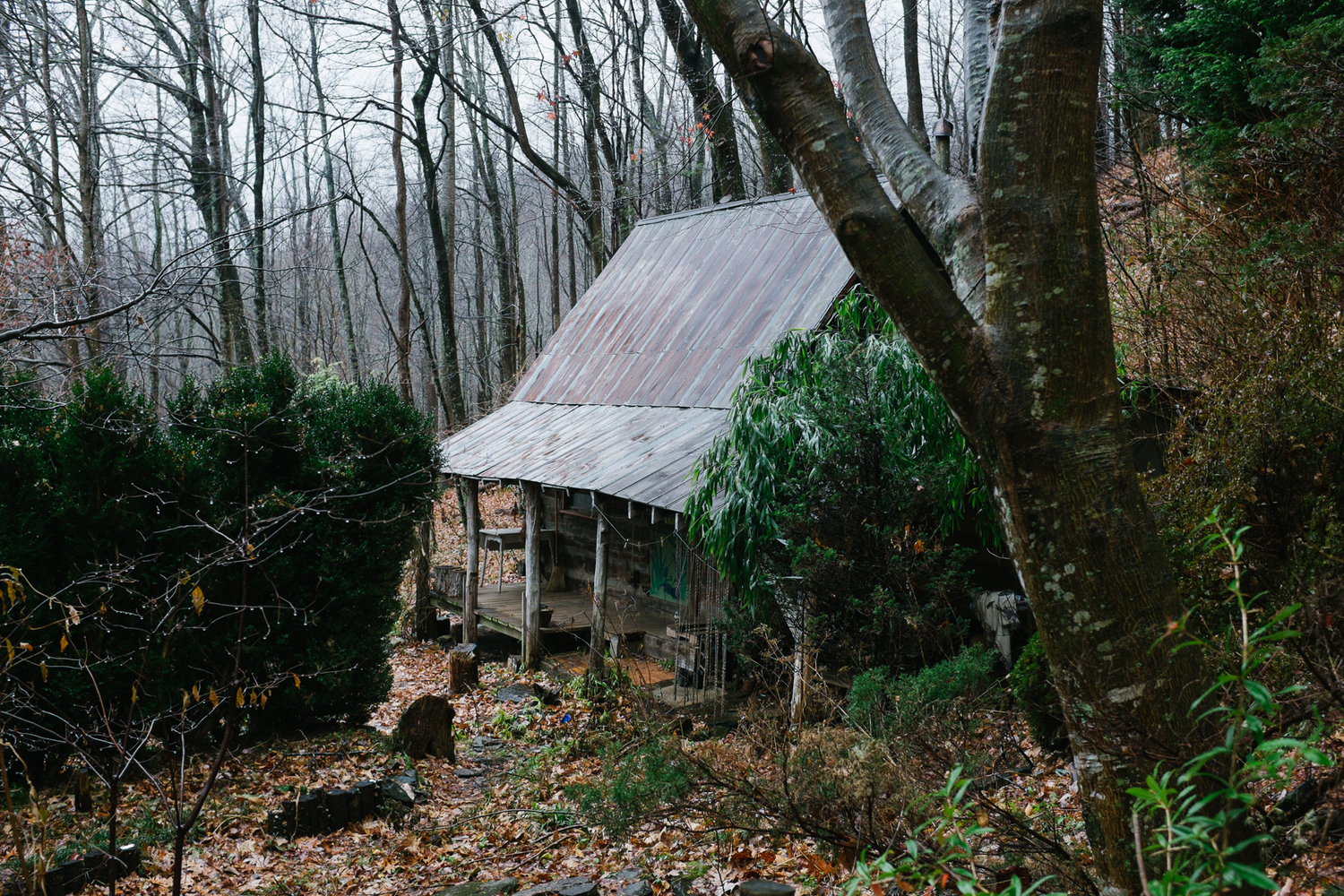 Building Your Own Home In The Woods Handmade Houses