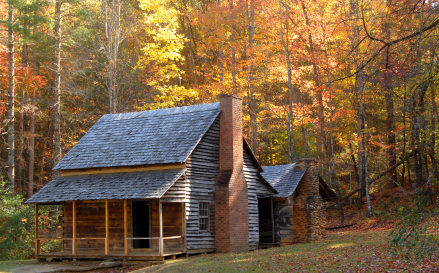 A log cabin in a wooded setting during the autumn season