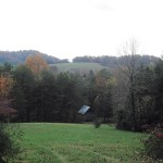 A pine cabin… part 3