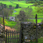 A fine old dry laid stone fence