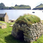 A sod roof