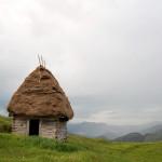 Vernacular roof